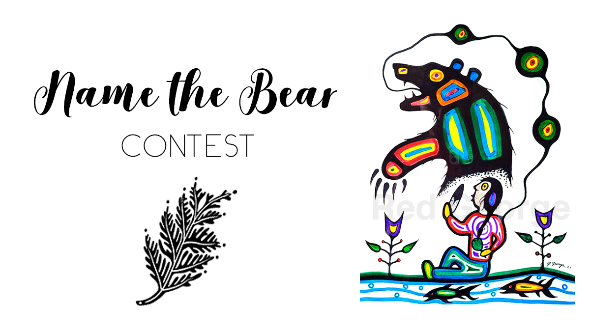 Name the Bear contest promotional image featuring artwork by Jeffrey